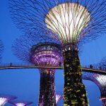 Auf Stippvisite in Singapur