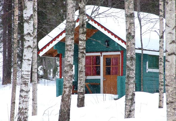 Versteckt im Birken- oder Tannenwald finden sich urgemütliche Ferienhäuser. (Foto Katharina Büttel)