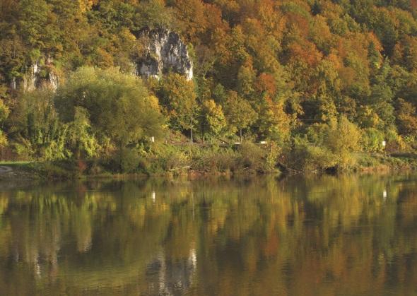 Der Donau-Panoramaweg präsentiert sich im farbigen Herbstkleid. (Foto Michael Körner)