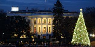 Lichtermeer, Schottenparade und Winterwund: Weihnachtenin und um Washington DC