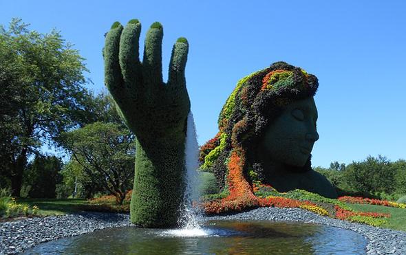 jardin-202150_640