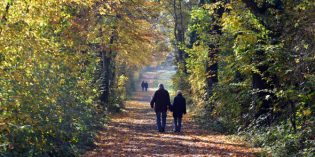 Auf den Spuren eines Heiligen –Wandern auf dem Baumberger Ludgerusweg