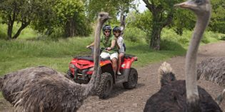 Mauritius einmal anders: Auf dem Meeresgrund spazieren, Ritt am Strand und Giraffen füttern
