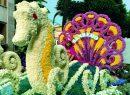 Frühling in Ligurien: Auf zwei Rädern durch die Blumenriviera