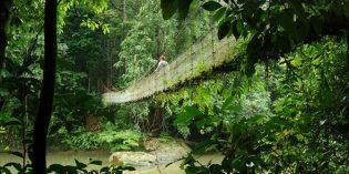 Kelantan, Terengganu und Pahang – Malaysias unbekanntes Tropenparadies