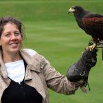 Flugübungen mit Falken – königlicher Sport im schottischen Hochland