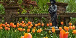 Blumige Tour durch Virginias historische Gärten