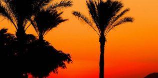Ägypten – Nachhaltigkeit in El Gouna