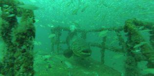 Schiffbruch zum Anfassen inPanama City Beach