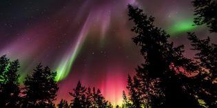 Notizen aus der Welt des Reisens – Aurora Borealis in Finnland, Löwen-Rückkehr in Südafrika