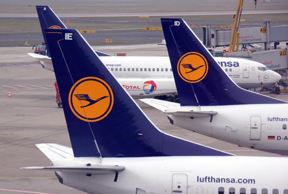 Die Kranich-Airline steigt aus dem Schutzprogramm für Kraniche aus. (Foto Karsten-Thilo Raab)