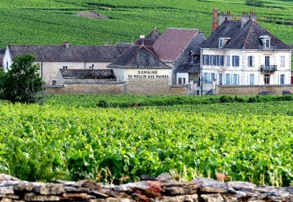 Burgund von der schönsten Seite: An der Route des Grands Crus reiht sich Weingut an Weingut. (Foto Katharina Büttel)