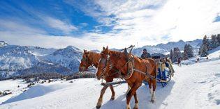 Stilles Schnee-Erlebnis statt laute Pistengaudi:Winterurlaub auf die sanfte Art