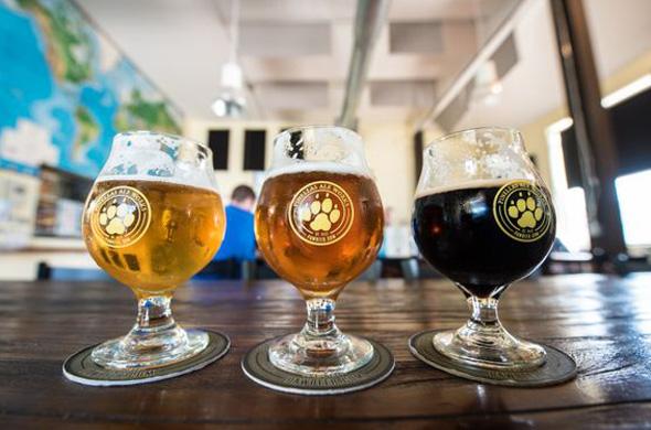 Die 33 Mikrobrauereien entlang des Craft-Beer-Trails begeistern durch zahlreiche schmackhafte Biervarianten.