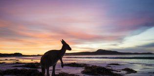 Unberührte Inselparadiese in Westaustralien