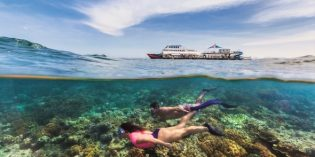 Als Forschungs-Praktikant am Great Barrier Reef