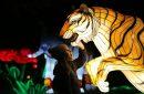 Notizen aus der Welt des Reisens – leuchtende Tiger, Kletterverbot und Durban-App