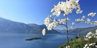 Die schönsten Frühlingswanderungen im Tessin