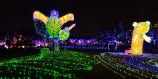 Taiwan geht mehr als nur ein Licht auf…