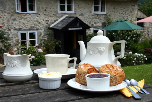 Der Cream Tea in Branscombe ist in jeglicher Hinsicht ein Genuss. (Foto Karsten-Thilo Raab)