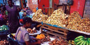 So schmeckt Suriname – neue kulinarische Routen