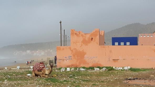 In Taghazout gibt sich der Atlantik deutlich weniger ruhig. (Foto Karsten-Thilo Raab)