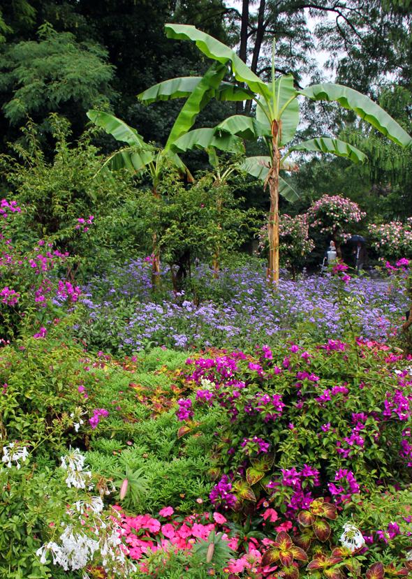 Geballte Pflanzenpracht auf Garnish Island. (Foto Karsten-Thilo Raab)