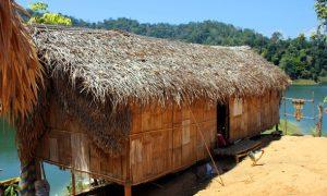 Royal Belum – eines der bestgehüteten Naturgeheimnisse in ganz Asien
