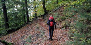 Elbsandsteingebirge erhält eigene Trekkingroute