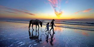 Die ganze Schönheit von Florida in nur fünf Bildern
