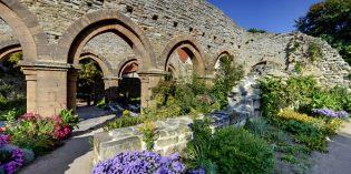 Kloster und Welt: Entdeckungstour durch die Klosterlandschaft an Saale und Unstrut