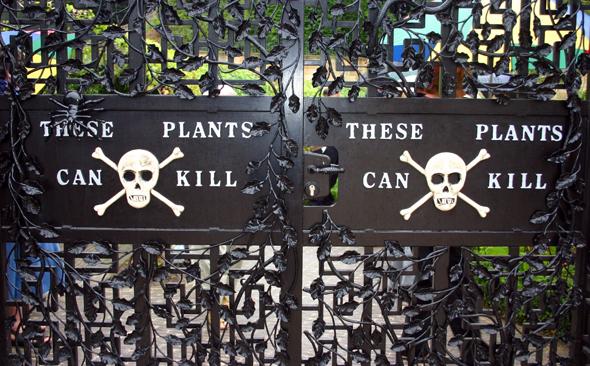 Mit schweren Eisentüren ist der Eingang zum Giftgarten versehen. (Foto Karsten-Thilo Raab)