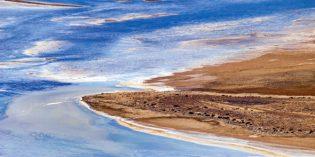 Seltenes Naturspektakel im australischen Outback