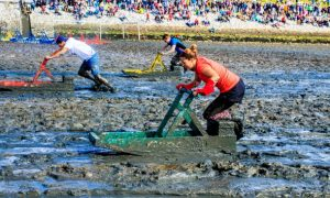 Schlickschlitten-Wältmeisterschaft im Watt