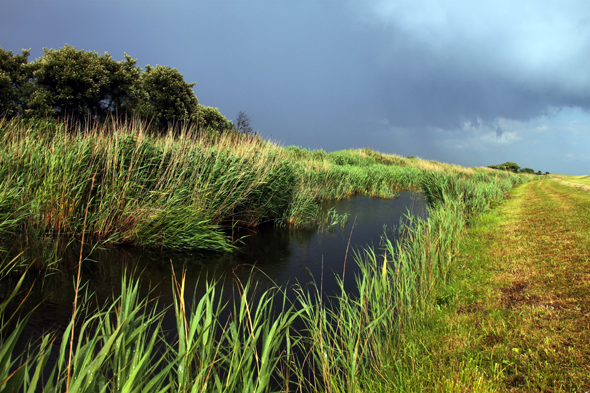 Das Tüskendör zählt zu den faszinierendsten Landschaften auf Borkzm. (Foto Karsten-Thilo Raab)