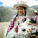 Alpakas – ein vierbeiniges Stück Peru zum Kuscheln