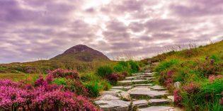 Typisch irisch: Nur die Grüne Insel hat sowas…