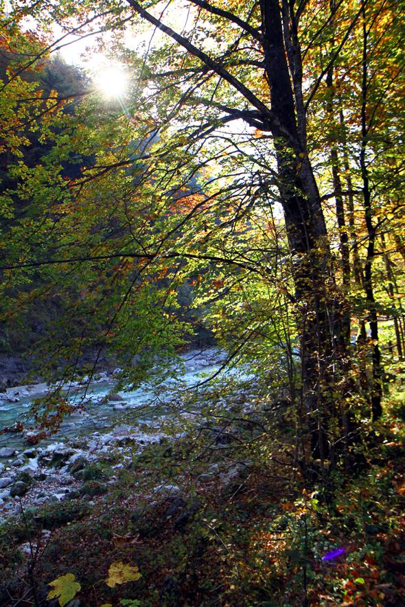 Famoses Herbststimmung an der Brandenberger Ache. - Foto Karsten-Thilo Raab