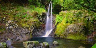 Madeira – mit hohem Puls durch den schwimmenden Garten im Atlantik