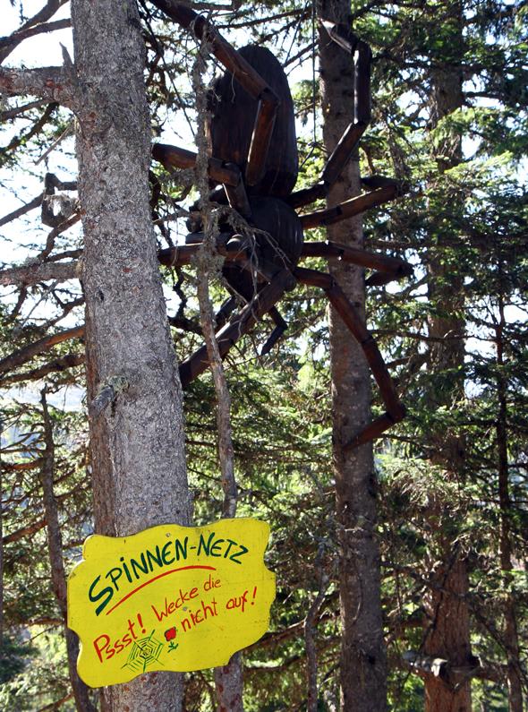 Die gigantische Spinne bewacht ihr fein gesponnenes Netz. - Foto Karsten-Thilo Raab