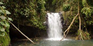 São Tomé und Príncipe: Besuch im Garten Eden