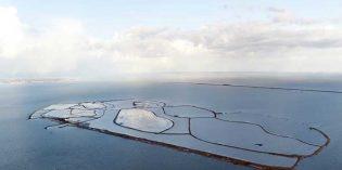 Nieuw Land: Neuer niederländischer Nationalpark