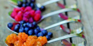 Finnische Küche: Köstliches Geheimnis im Norden