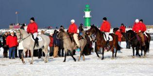 Kamelreiten und Eisbaden beim Warnemünder Wintervergnügen