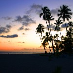 Martinique – Traumstrände so weit das Auge reicht