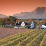 Farbenfrohe Winzerfeste in Südafrika