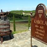 Kroatische Weinbaukunst in Vollendung