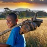 Fidschi-Inseln sind nicht nur für Taucher ein Traumziel