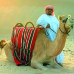 Stopover in Dubai – Stippvisite in der Wüstenmetropole