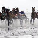 Ungewöhnliches Pferderennen im Wattenmeer